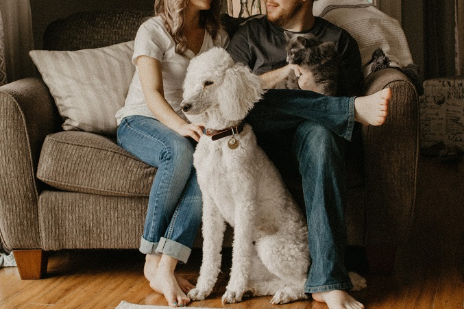family with standard poodle